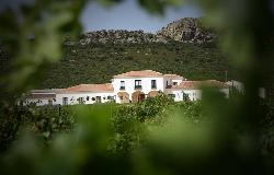 Viña Santa Marina en Provincia de Badajoz