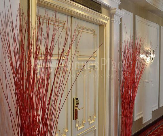 Espacios exclusivos a en Hotel Carlton