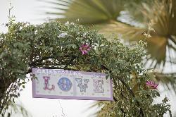 Detalle de arco en jardín de ceremonias en Hacienda Los Conejitos