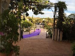 Centrada a ceremonia en el jardín de Las Calas