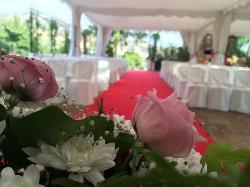 Ceremonia civil interior alfombra roja en Hacienda Los Conejitos
