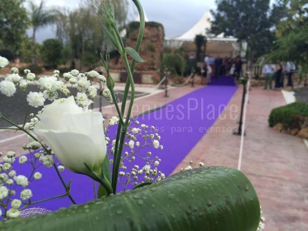 Entrada ceremonia civil en Hacienda Los Conejitos