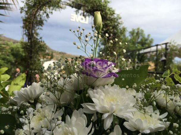 Jardin ceremonia civil en Hacienda Los Conejitos