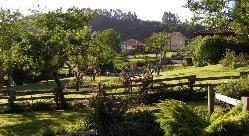 Espacios ideales para realizar actividades team building en El Pedrueco Turismo Rural