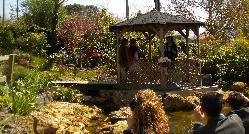 Boda civil en la pérgola del estanque en El Pedrueco Turismo Rural