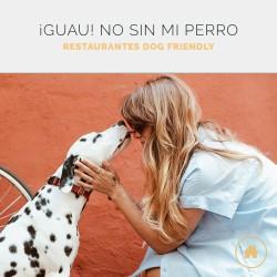 Los mejores restaurantes dog friendly para ir con tu mascota